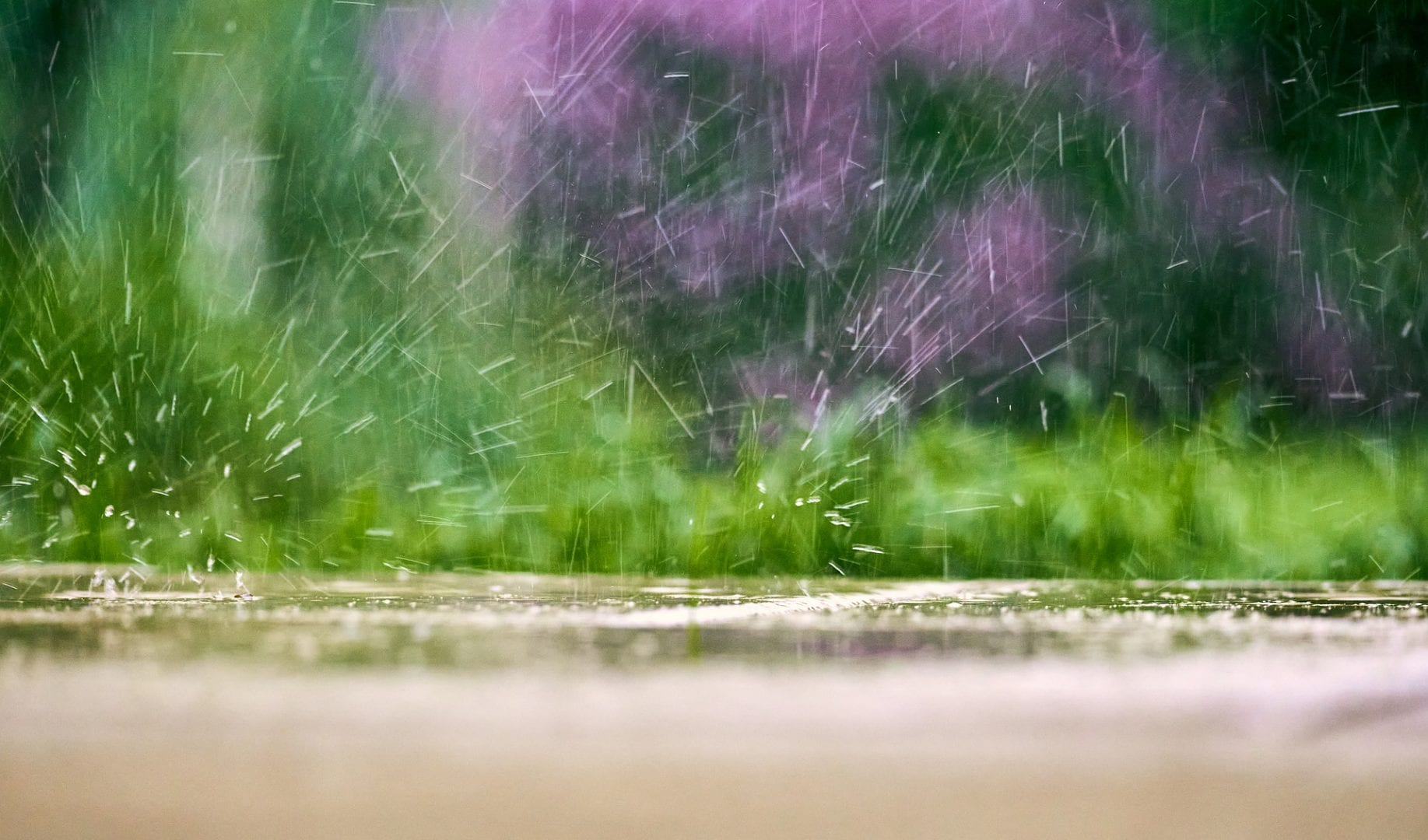Improve Drainage In Your Lawn